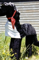 animals-mascots-2260