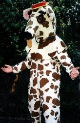 animals-mascots-2267