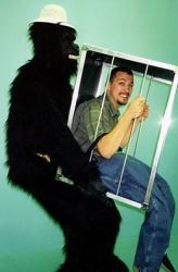 animals-mascots-2271
