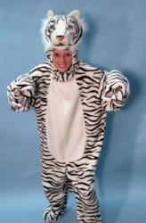 animals-mascots-3294
