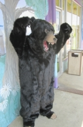 animals-mascots-3347