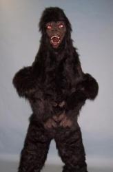 animals-mascots-824