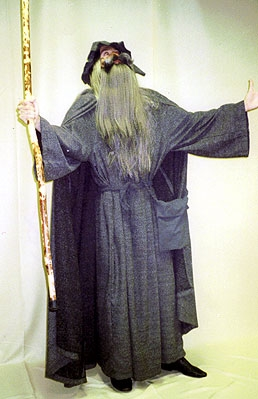 wizards-2356 & Disguises u0026 Costumes Wizard Costumes | Disguises u0026 Costumes